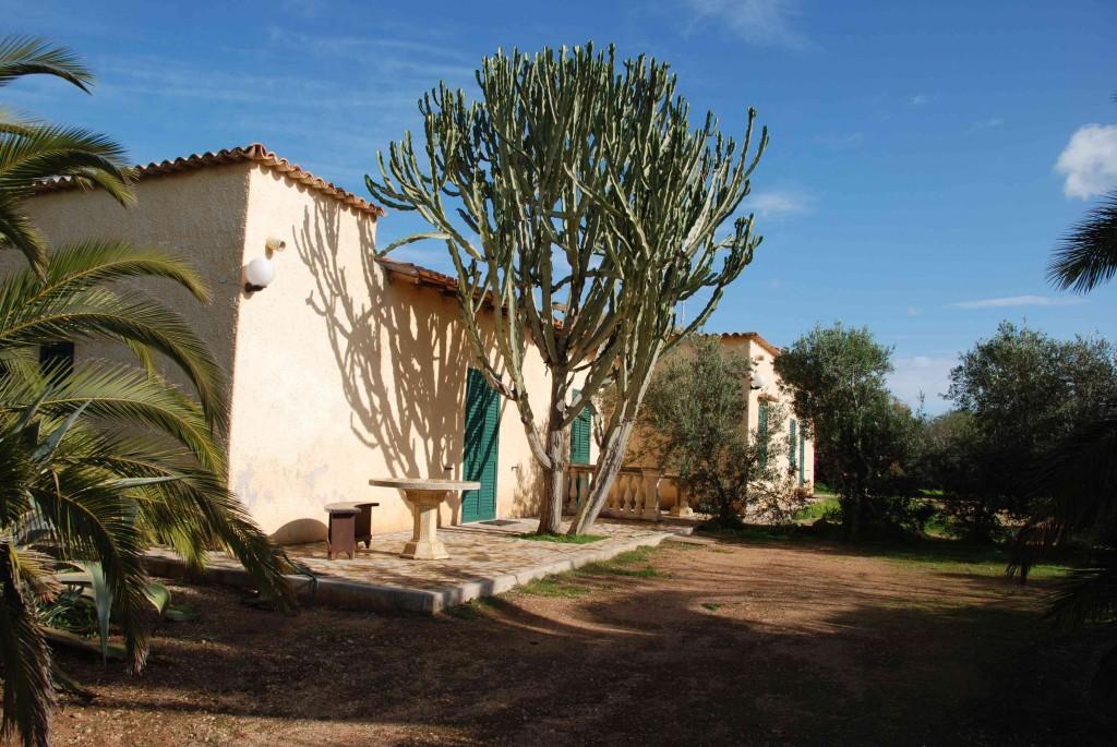 un p'tit coucou de notre nouveau domaine Torre Salsa maison-1024x685